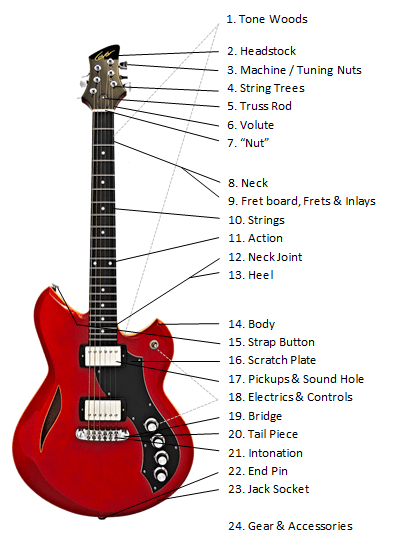 Parts Of The Guitar? ALL Anatomy Explained | ULTIMATE GUIDEGuitar Skills Planet