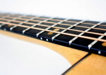 Fret Board Types Explained (COMPLETE GUIDE)